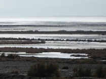 Wetlands hinter Varzaneh
