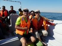 Beim Delfinbeobachten
