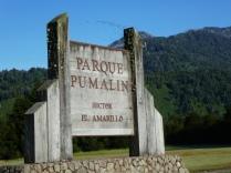 Park Pumalin