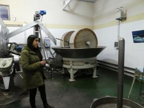 Besichtigung der Olivenmühle