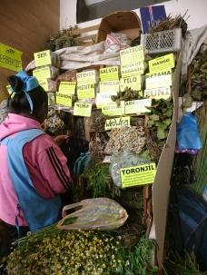 Heilkräuter im Mercado Central