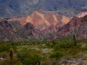 Auf der Quebrada de Humahuaca
