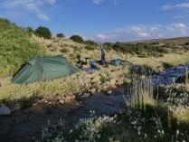 überraschend Gras und Wasser zum Zelten
