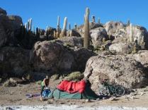 unser Zeltplatz auf der Isla Incahuasi