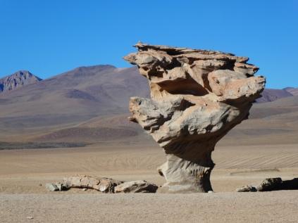 der Arbol de Piedra