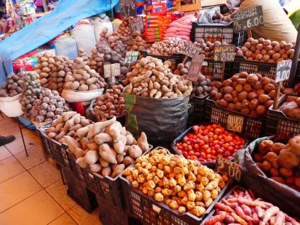 lauter verschiedene Kartoffelsorten