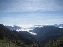 Blick ins Yunga-Tiefland