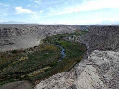 der Rio Loa - grünes Band inmitten der Wüste
